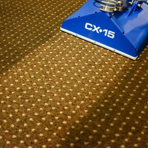 cx15_brown_carpet.jpg