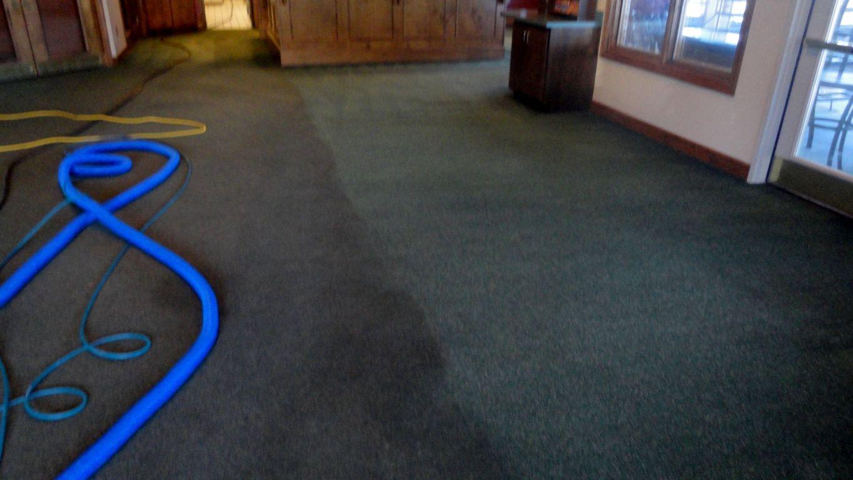 encapuclean_carpet_pic..jpg